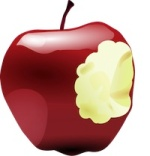 iPad for education, teaching with iPad